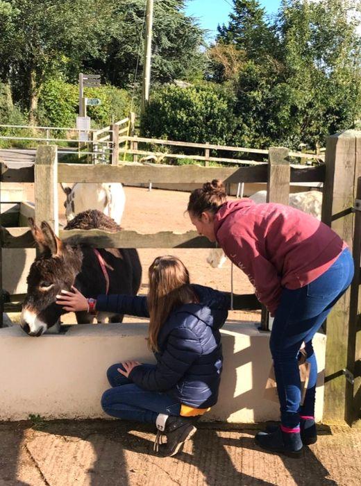 Sidmouth Donkey Sanctuary meeting the donkeys