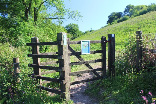 Dumpdon Hill Fort kissing gate