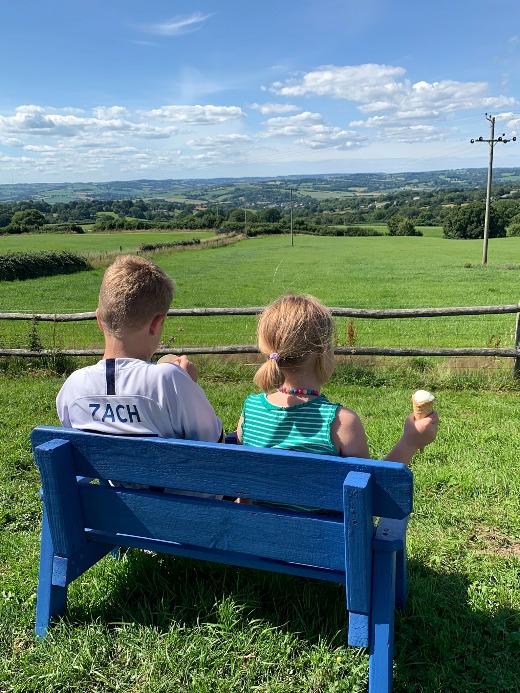 Furzeleigh Down Dairy Ice Cream