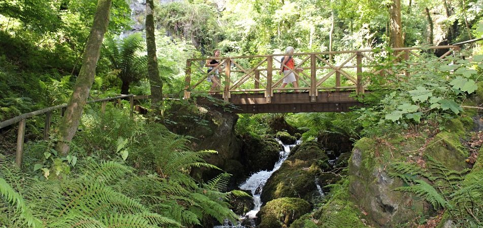 Family Day Out and Walk on Dartmoor at Canonteign Falls