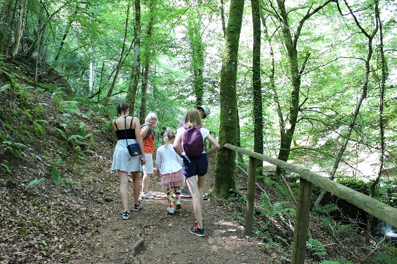 Family Day Out and walk on Dartmoor Canonteign Falls Woodland Walk
