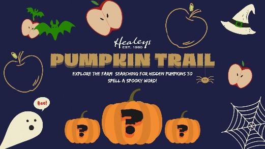 Healeys Pumpkin Patch Cornwall