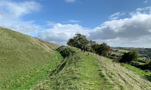 Hambledon Hill Fort Best Dorset Walks
